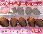 ストロベリーショコラ2015☆苺チョコレートフォンデュ